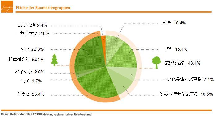 ドイツの樹種構成